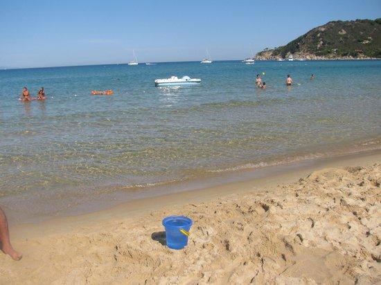 """Hotel Casa Rosa : Spiaggia a """"due""""passi dall' hotel(lettini convenzionati)"""