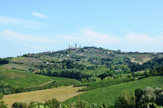 Podere Villuzza : Vue sur San Gimignano depuis le jardin