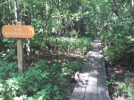 Racine, WI: The Boardwalk Trail at River Bend