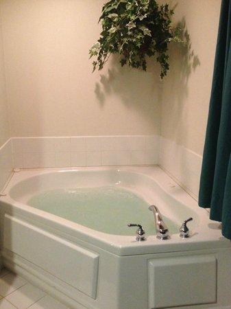 Grey Fox Inn & Resort: Jacuzzi tub was nice