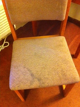 Good Nite Inn Rohnert Park: The chair had the same kind of stains as the rug.