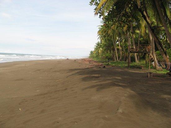 Clandestino Beach Resort: Nice clean black sand