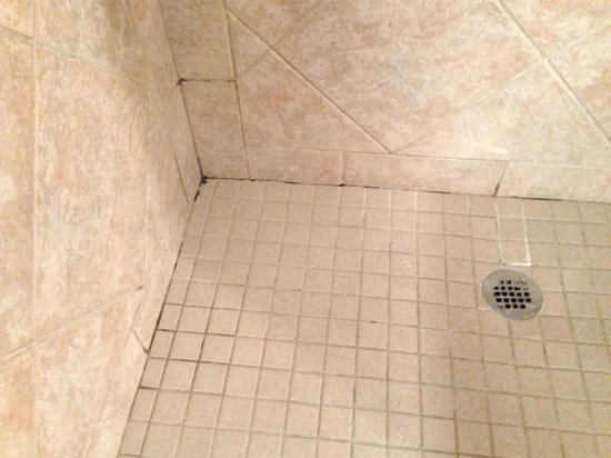 Harbour House Hotel: Suite 109 Shower grouting