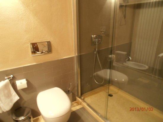 Hotel Ad Gallias : Bagno con doccia