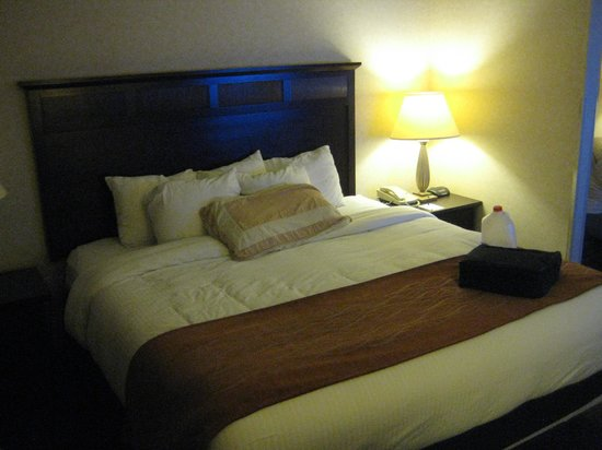 Comfort Inn & Suites Madison North: Comfortable King bed