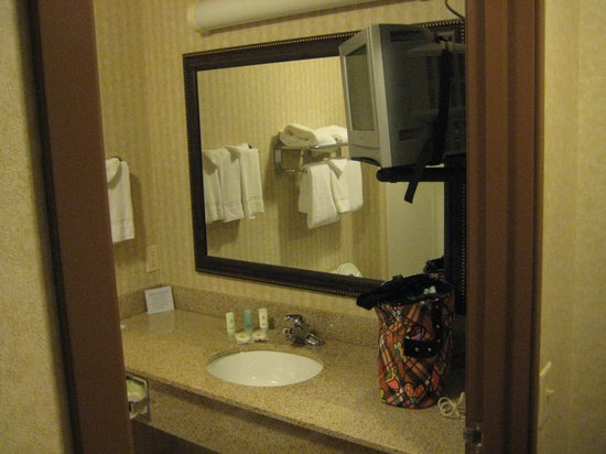Comfort Inn & Suites Madison North: Spacious bathroom with 2nd TV