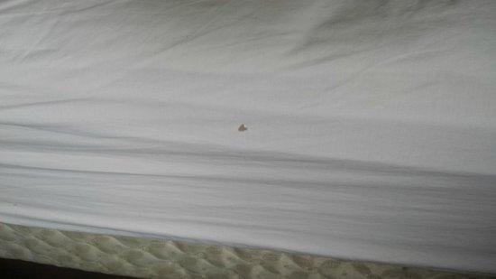 "Sandman Hotel Saskatoon: Ripped ""new"" sheets"