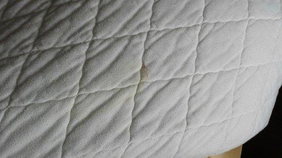 Sandman Hotel Saskatoon: Stain on bottom of comforter (one of many)
