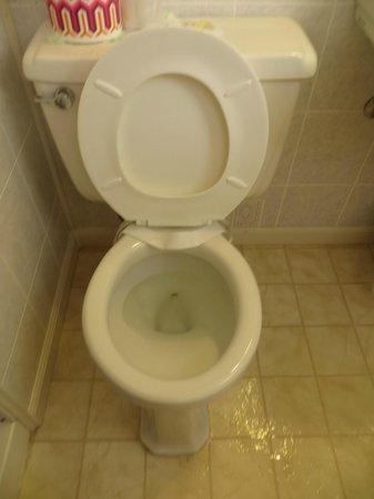 Lake Winnipesaukee Motel: Washroom