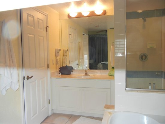 The Cove on Ormond Beach : master bathroom vanity, only 1 hook on wall