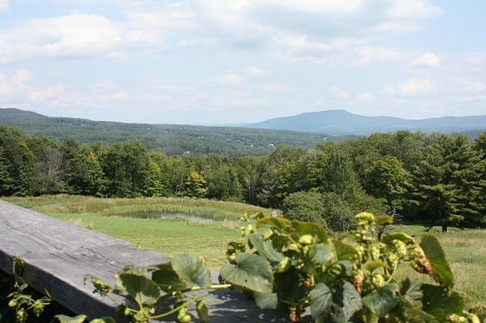 DeliBakery & Brewery at Trapp Family Lodge : view from the Von Trapp DeliBakery