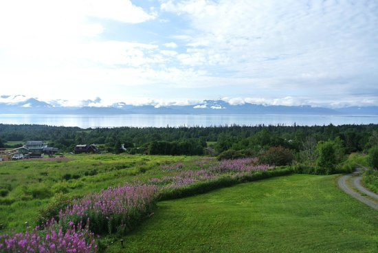 Good Karma Inn: A view of the front yard, Kachemak bay and beyond to three different glaciers.