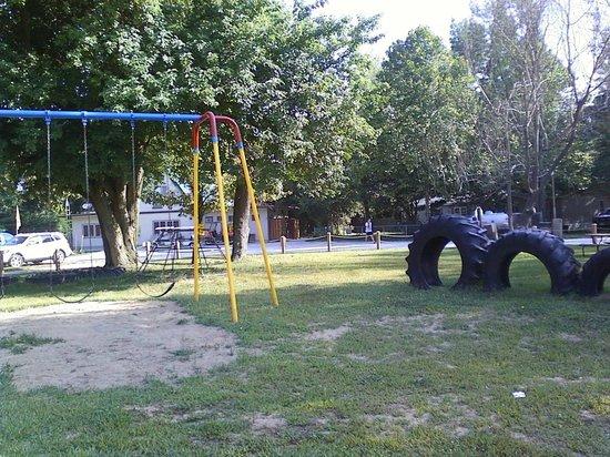 Springfield Koa: Freshly painted playground equipment