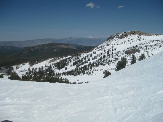 Mammoth Mountain: Typical view