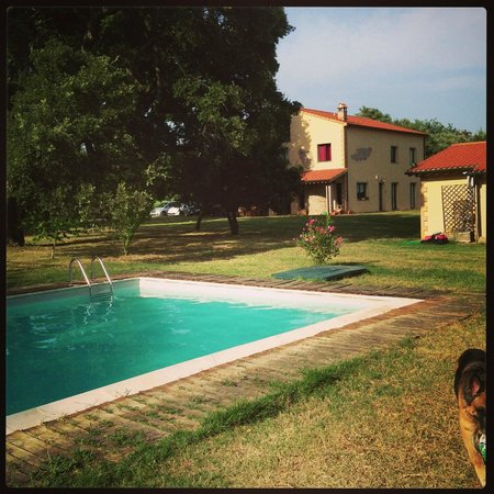 Podere Le Querce: B&B Le Quesrce - Pool View