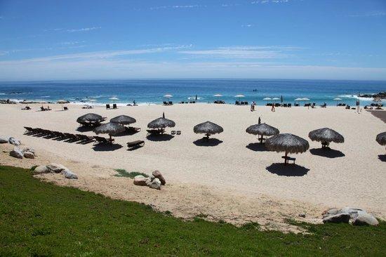 Hilton Los Cabos Beach & Golf Resort: Hilton beach