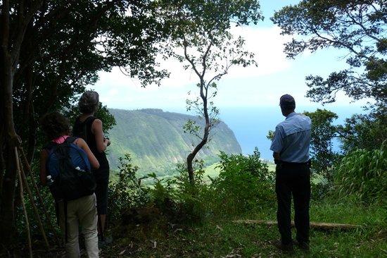 Hawaiian Walkways: Learning about the valley