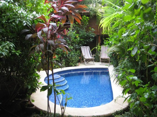 Casa Cubana: Another view of the gorgeous pool.