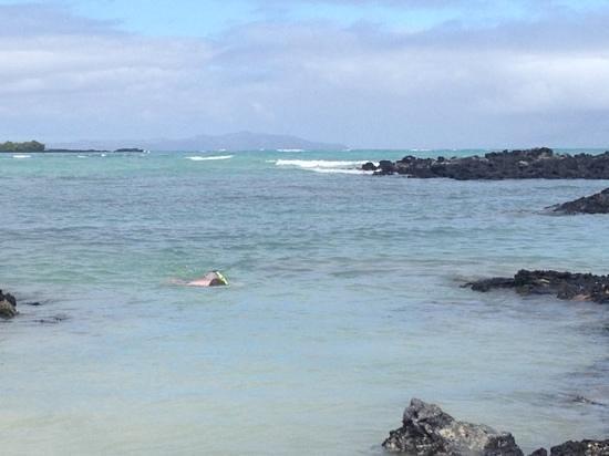 El Garrapatero: snorkeling