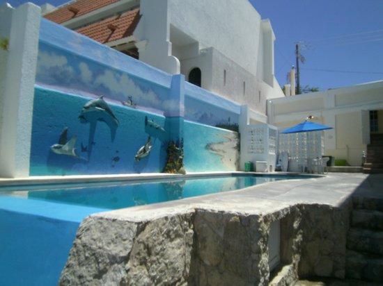 Villa Aldora: Infinity pool