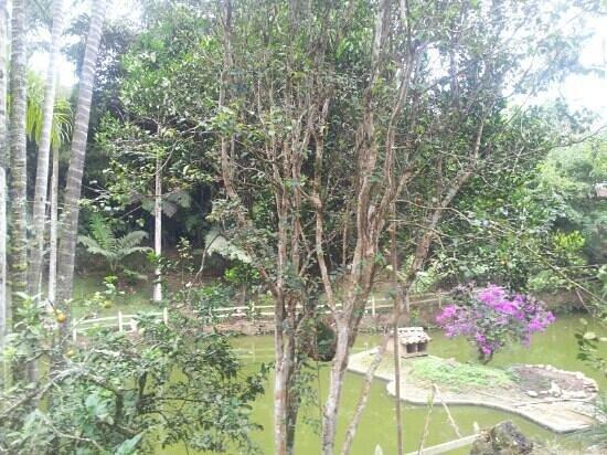 eco hotel los lagos, Marsella, Risaralda, Colombia