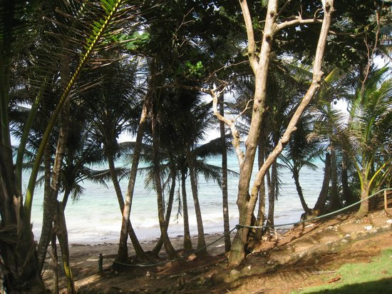 Casa Iguana : Deck view from Grand Casita 1