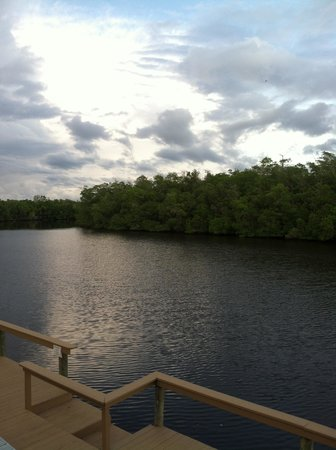 River Wilderness Waterfront Villas, Everglades: Veiw from our room of the dock and water.