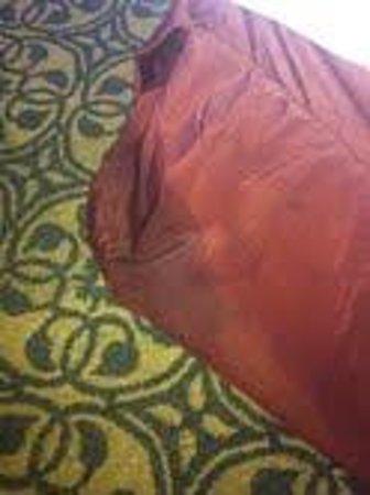 Hilton Savannah Desoto: Greasy stain on dust ruffle