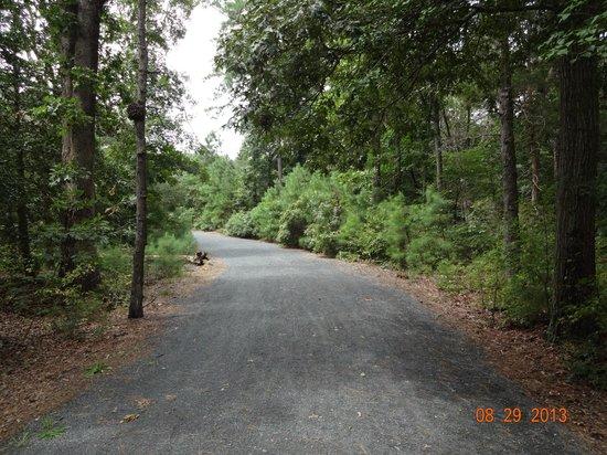 Junction and Breakwater Trail: Junction Breakwater Trail