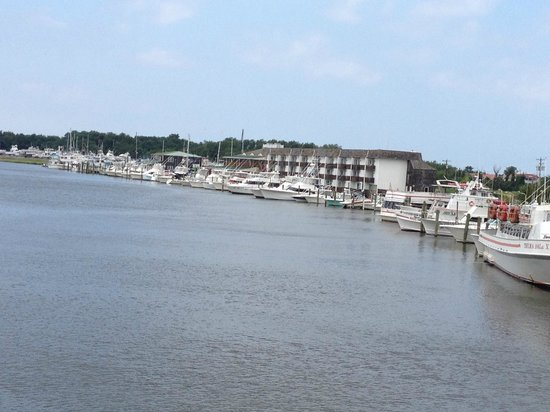 Junction and Breakwater Trail: Marina in Lewes