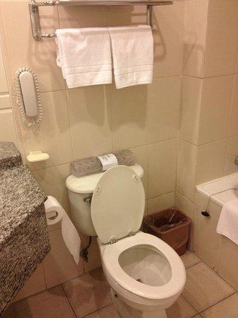 Diego de Almagro Hotel: WC