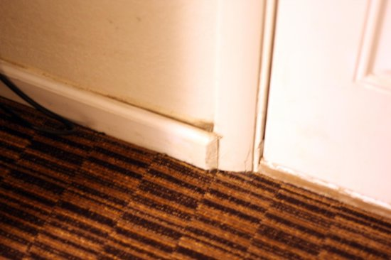 Valley Motel: Dirty baseboards