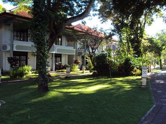 Puri Saron Seminyak : garden in front of our room