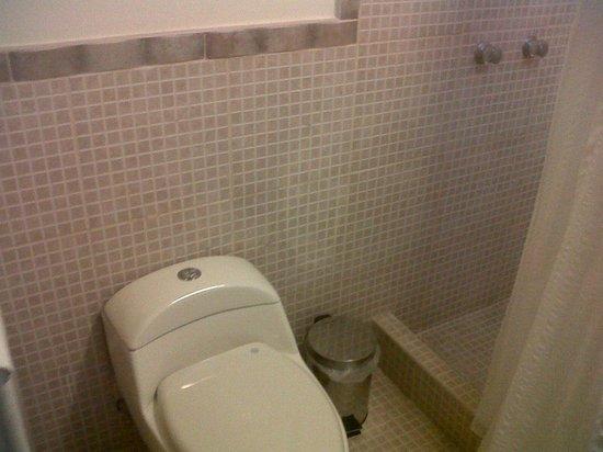 Las Condes Hs.: toilet del cuarto