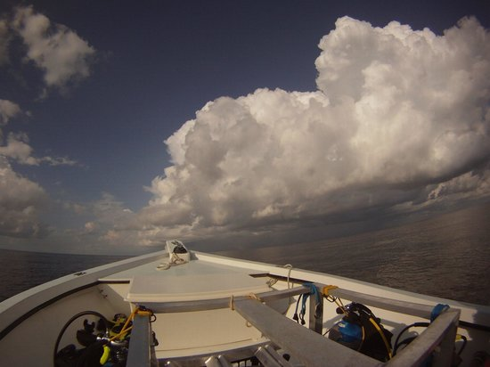 Florida Underwater Sports: A storm cell which unfortuantly meant the day was slightly cut short due to safety precautions.