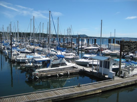 Harbourfront Walkway : Yacht club.