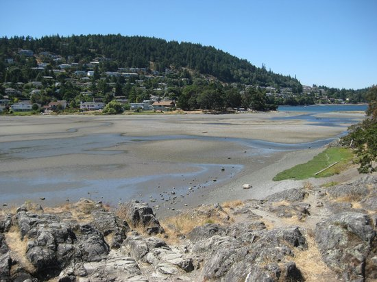 Pipers Lagoon Park: The lagoon at low tide.