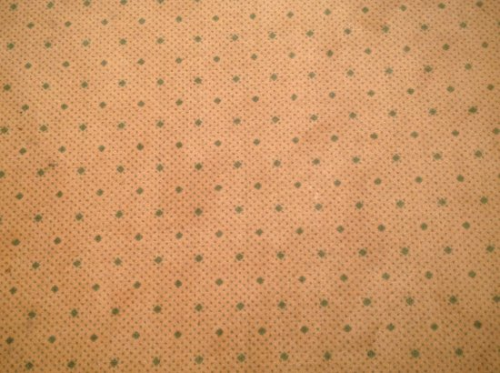 Hotel am Sophienpark: badly stained carpet