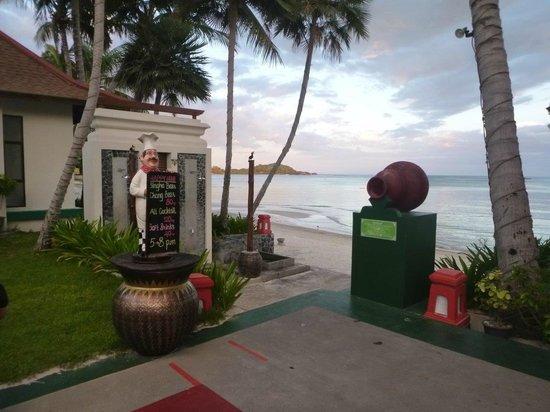 เดอะ บริซา บีช รีสอร์ท : Down to the beach