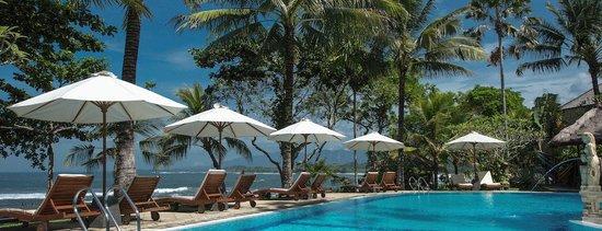 Puri Dajuma Cottages: Dajuma 20 x 10 m swimming pool
