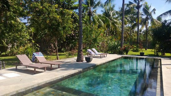 Kelapa Luxury Villas: Lots of splashing time here!