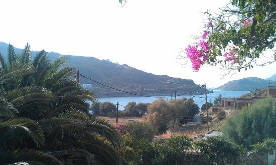 Mathios Studios: View from the veranda