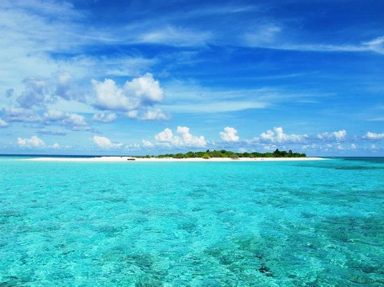 Tomia Scuba Dive: Nda'a Island
