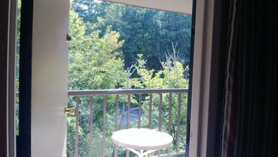 Sidney James Mountain Lodge: View through window of room