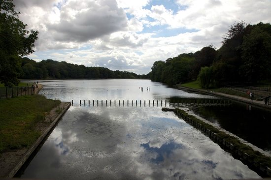 Roundhay Park: View from the café