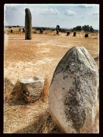 Ebora Megalithica Guided Tours: Cromlech des Almendres (cromeleque dos Almendres)