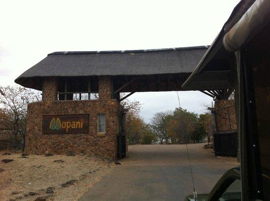 Mopani Rest Camp: Entrada al campamento