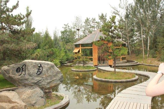 Yinchuan Botanical Garden