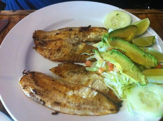 Brody's Mexican Restaurant: fish plate