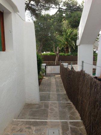 Casa Ceiba Maria: petite allée qui nous enmène dans les chambres.